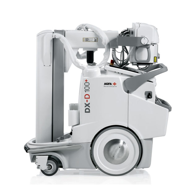 DX-D 100 1